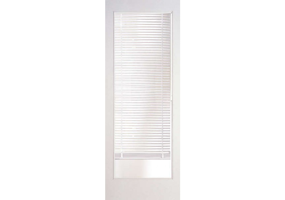 Insert With Mini Blinds French Door